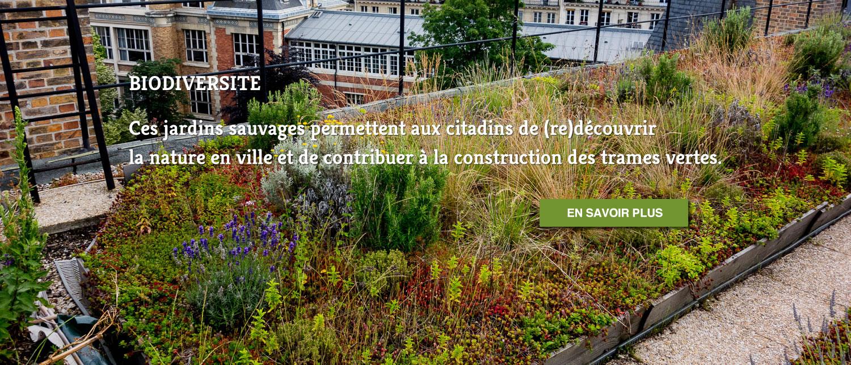 Topager entreprise du paysage urbain comestible et sauvage for Entreprise du paysage