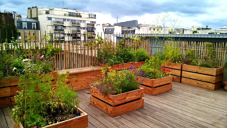topager jardin sur un toit pour un particulier. Black Bedroom Furniture Sets. Home Design Ideas